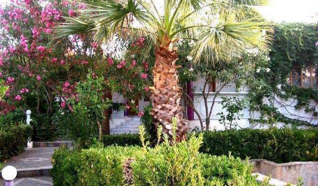 preferred site for booking accommodation in Chania, Greece