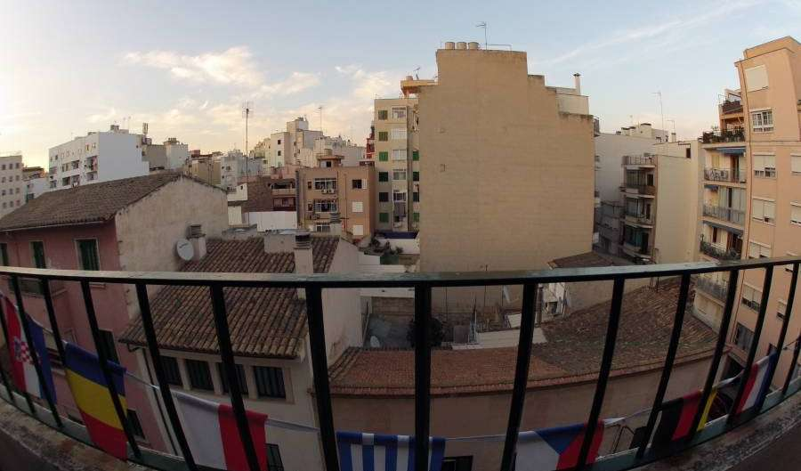Search availability for the best youth hostels in Palma